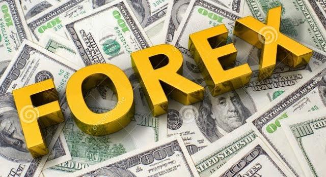 Panduan Belajar Trading Forex Untuk Pemula