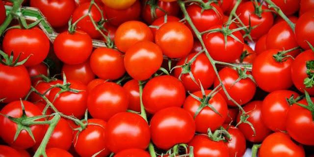 Jangan Pernah Simpan Tomat Di Dalam Kulkas, Ini Alasannya!