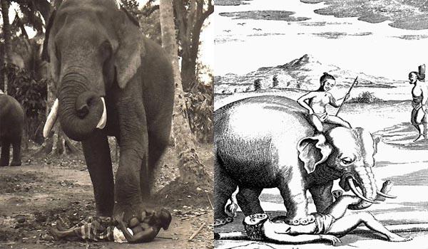 Beginilah Proses Eksekusi Menggunakan Gajah yang Mengerikan